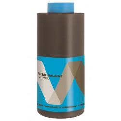 Torroglosa Vital Balance Shampoo